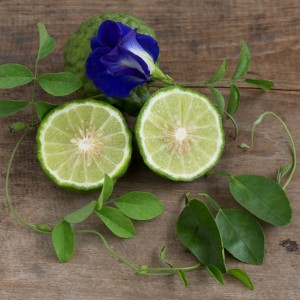 Bergamot & Patchouli Fragrance Oil