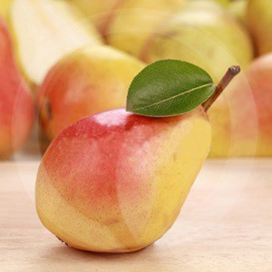 Asian Pear & Lily Fragrance Oil