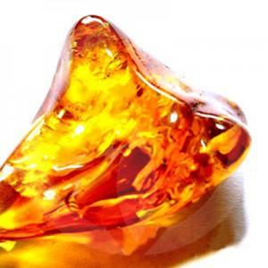 Baltic Amber Fragrance Oil