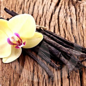 Vanilla Musk Type* Fragrance Oil