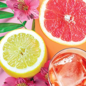 Pink Lemonade Fizz Candle Fragrance Oil - February Release