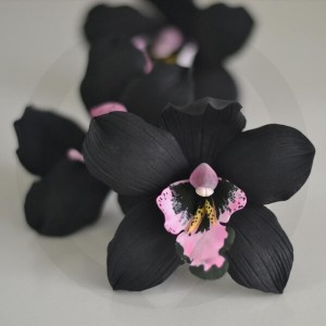 Ginger & Black Orchid Candle Fragrance Oil - October Release