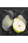Black Musk & Pear Fragrance Oil
