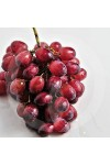 Amazonian Grape Candle Fragrance Oil