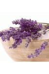 Lavender Vanilla Candle Fragrance Oil