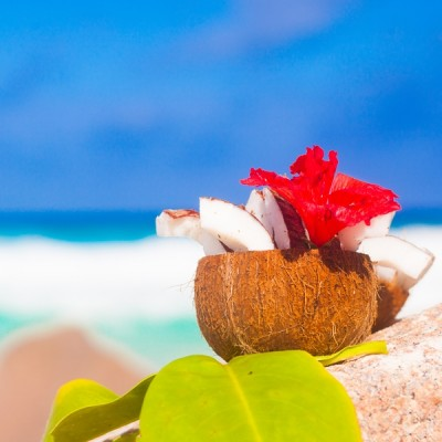 Coconut Palm & Hibiscus Fragrance Oil