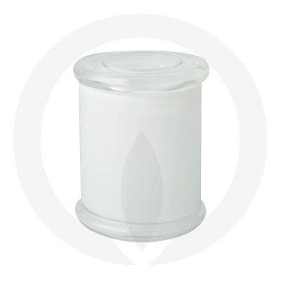 Danube Large Base and Flat Lid Transparent White (Packed with lid on)