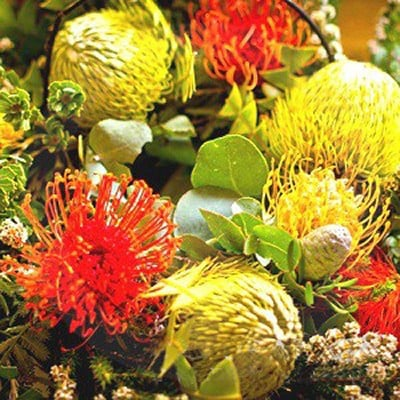 Australian Florals & Honey Fragrance Oil