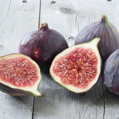 Black Fig & Guava Fragrance Oil