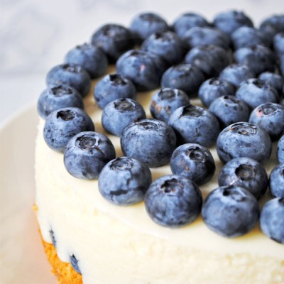 Blueberry Cheesecake Candle Fragrance Oil