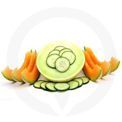 Cucumber Melon Candle Fragrance Oil