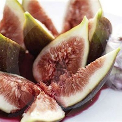 Fig & Cassis Fragrance Oil