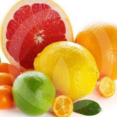 Juicy Clementine Fragrance Oil