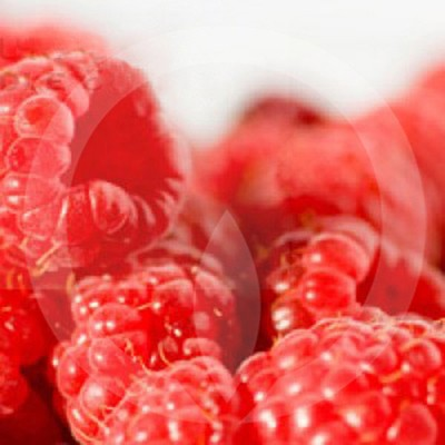 Sun Ripened Berry Candle Fragrance Oil